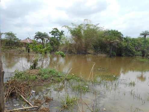 Rivers and houses - Ecological disaster in the making