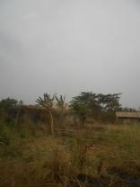 Eku houses, with untarred roads